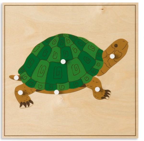 Tierpuzzle Schildkröte