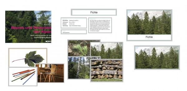 Bäume und Sträucher der Alpen