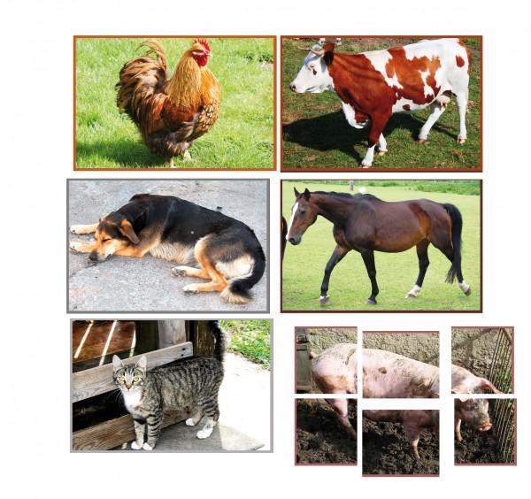 Bauernhoftiere 6 Puzzle/6-teilig