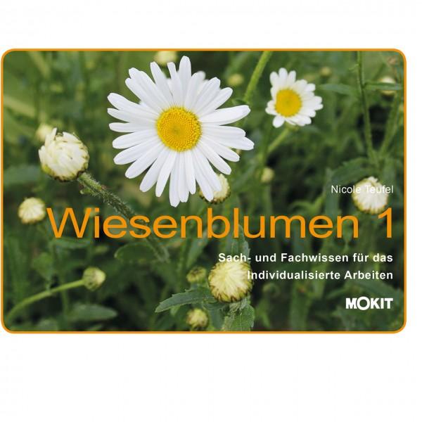 Wiesenblumen 1 mit Sach- und Fachwissen auf 21 Seiten