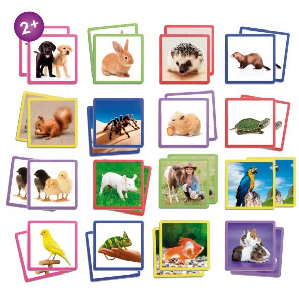 Maxi MEMORY beliebte Tiere