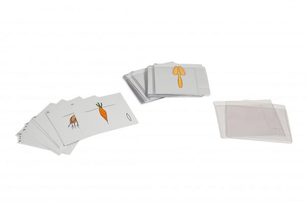 Botanischer Kartensatz Serie 2