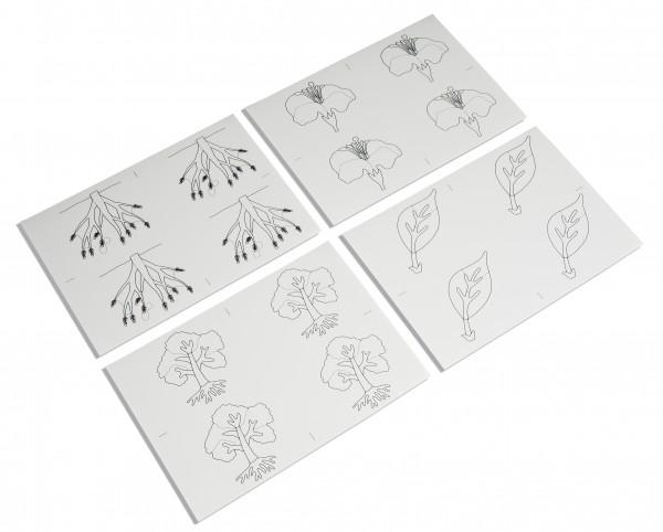 Kopiervorlagen für Botanische Puzzles
