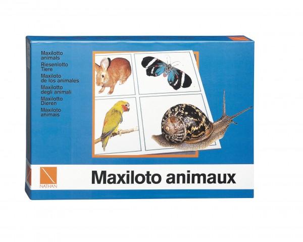 Maxi Lotto Tiere