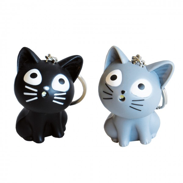 Taschenlampe Kätzchen