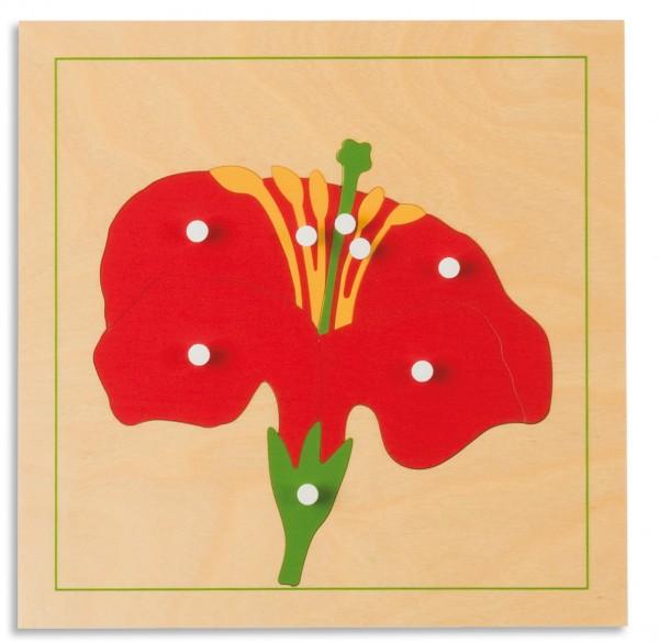 Botanisches Puzzle Blüte