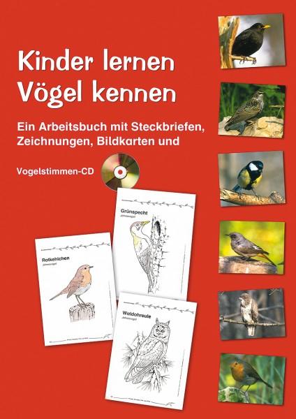 Kinder lernen Vögel kennen