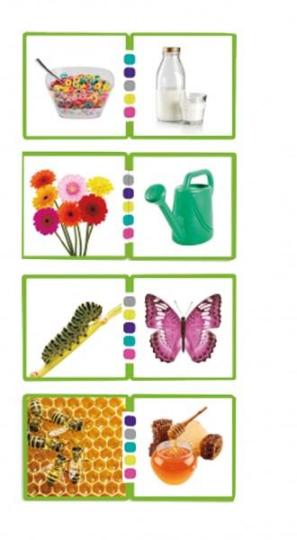Fotokarten Wortassoziationen