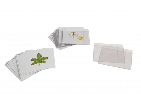 Botanischer Kartensatz Serie 3