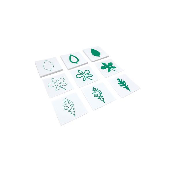 Botanische Kartensatz (GAM)