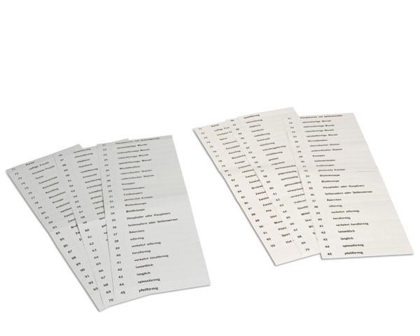 Namenskärtchen für botanischer Kartensatz 2 Nienhuis